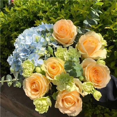 【新款花束:希望】蓝色绣球一支、香槟玫瑰6支、尤加.. - [field:month/]-[field:day/]