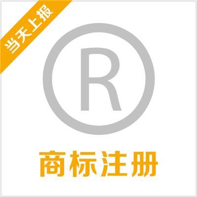 法人汇商标注册(包通过)